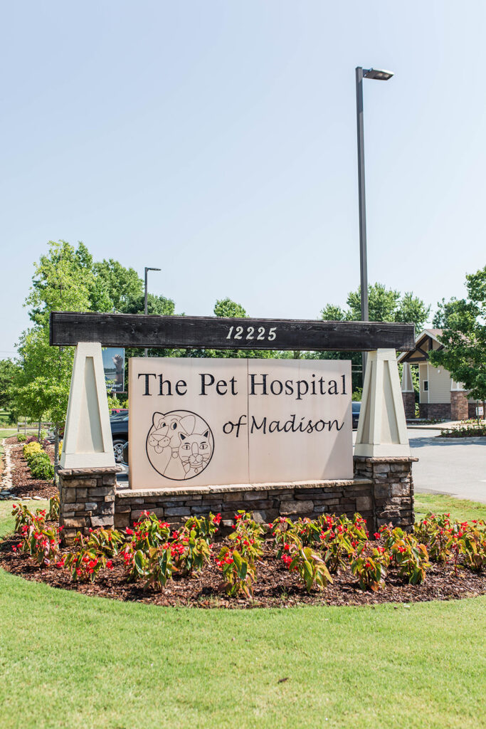 With 40 employees, The Pet Hospital of Madison is an all-inclusive veterinary experience, offering both full-service medical options as well as lifestyle services.