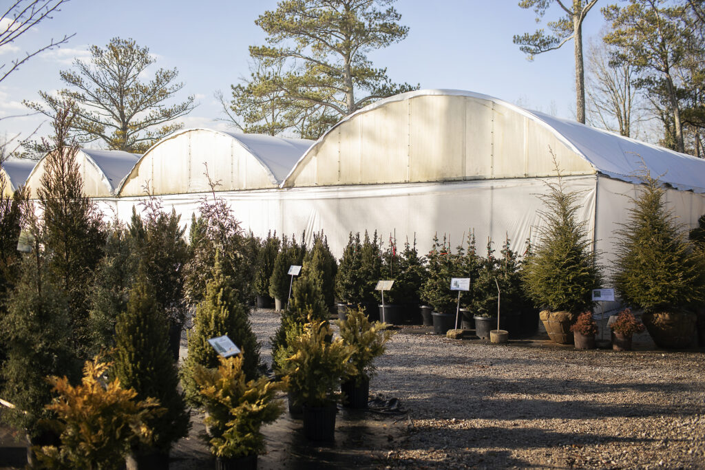 Indian Creek Wholesale Nursery in Madison, Alabama first began in the same location where they can be found today. They pride themselves on being a family-owned, local company that works hard to provide the best of the best to Madison and surrounding areas.