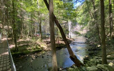 80 Miles From Here: Adventuring to Monteagle, Tennessee