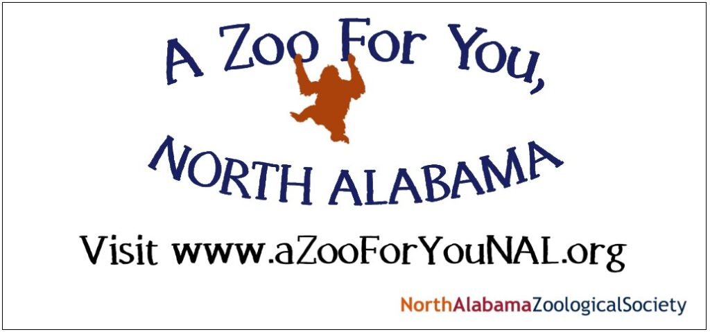 """This North Alabama zoo location will boast roughly 279 acres and be home to only the animals that will thrive at the location. But yes - traditional """"big"""" animals are 100% in the plans!"""