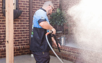 More than Pressure and Water: Why 256 ProWash is a Step Above Other Pressure Washing Companies