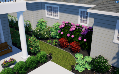 Landscaping Our Yard with Indian Creek Nursery Part Two: Design Reveal & Plant Walk