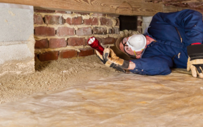 Having Crawl Space Issues? Look No Further Than Southern Crawl Space in Madison, Alabama