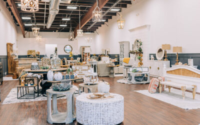 Wood & Cloth Interiors: All The Details about Friday's Grand Opening