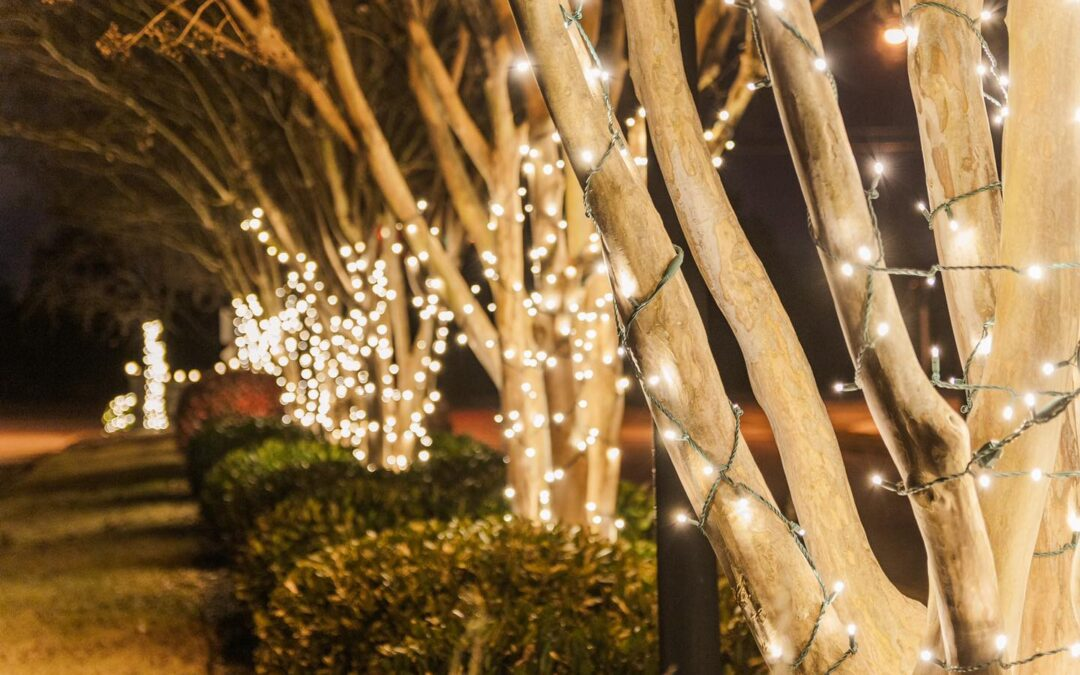 Residential and Commercial Christmas Light Installation with Holiday Lighting Solutions